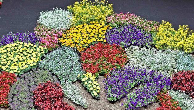 En el patio del Palacio del Condestable, un árbol de flores expresa la interculturalidad.