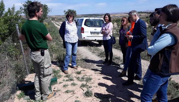 foto de La directora general de Medio Ambiente, autoridades y personal técnico visitan una zona objeto de actuación en Ribaforada.