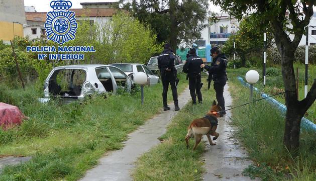 Los arrestos han sido en San Pablo de Buceite (8), Algeciras (1), Torrelavega (1) y Marbella (1)