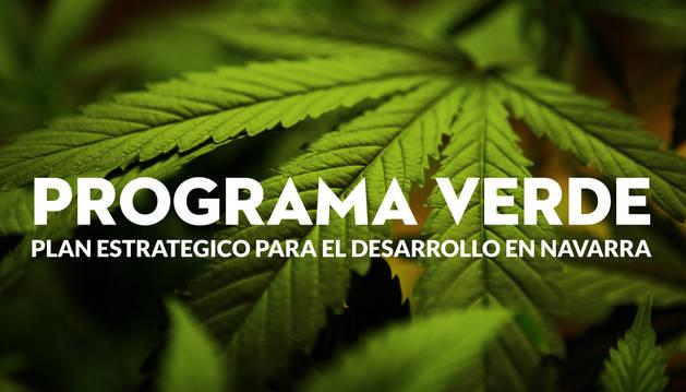 el-partido-cannábico-destaca-la-incidencia-del-cannabis-en-la-creación-de-empleo