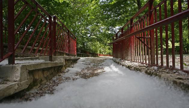 El parque de Los Llanos de Estella, cubierto por un manto blanco de pelusas.