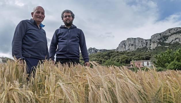 Alfredo Montoya Bujanda y su hijo Asier Montoya Mondragón, en un campo de cereal en Nazar, con la sierra de Codés, detrás.