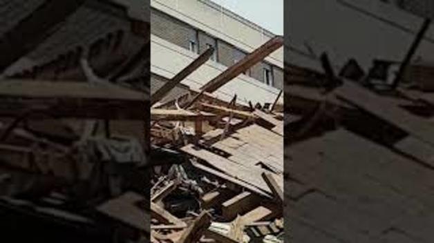 Denuncia en Burlada por el derribo de un edificio con gatos en el interior