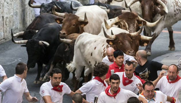 Con la cabeza rapada, Javier Muñoz Aguado 'El Boti' es arrollado por dos de los cabestros que tiran de la manada en la cuesta de Santo Domingo.