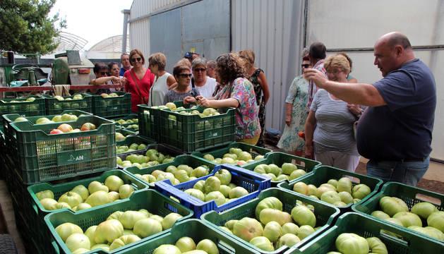 Los vecinos que visitaron el invernadero de Francisco Ferrández observan los tomates a su llegada.