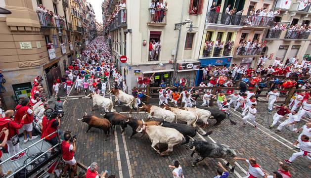 Foto de los astados de Cebada Gago, en la curva de Mercaderes, guiados por los cabestros en el encierro del día 8.