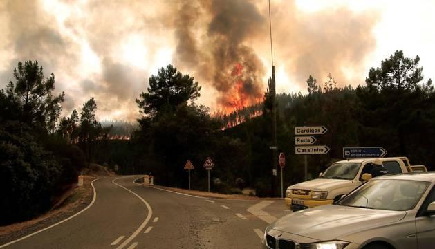 Las llamas superaron un perímetro de 50 kilómetros y unos 800 efectivos participaron en las labores de extinción del fuego.