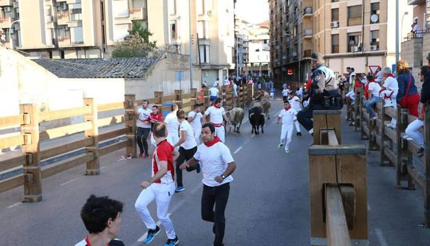 Foto de las reses de la ganadería portuguesa Manuel Pereira Lupi, mientras avanzan por el recorrido en el quinto encierro de fiestas de Tudela 2019.