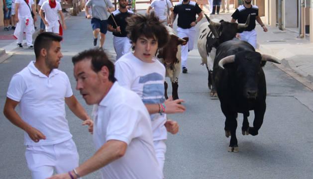 Foto del último toro rezagado de este martes, que dio la oportunidad a los mozos de una segunda carrera.