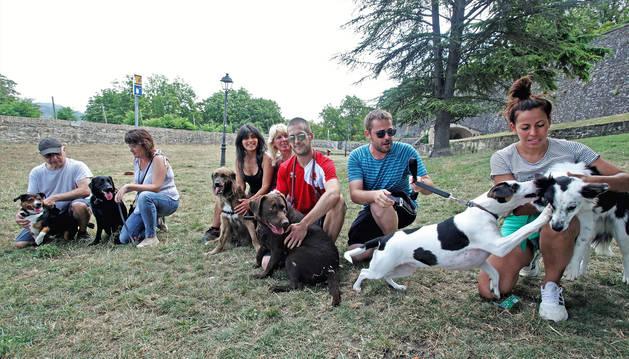 Foto de varios de los habituales usuarios del recinto canino del Casco Antiguo con sus mascotas.