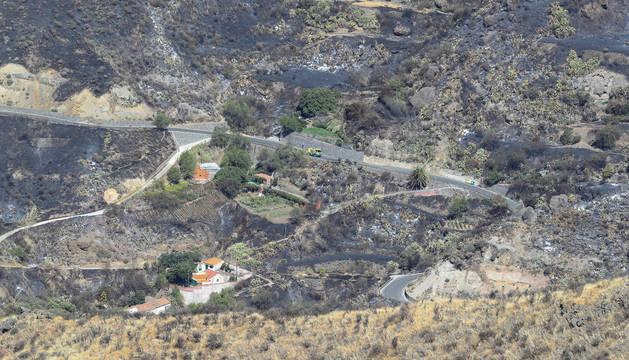 Foto desde la Cruz de Tejeda en la mañana de este lunes de la zona arrasada por el incendio.