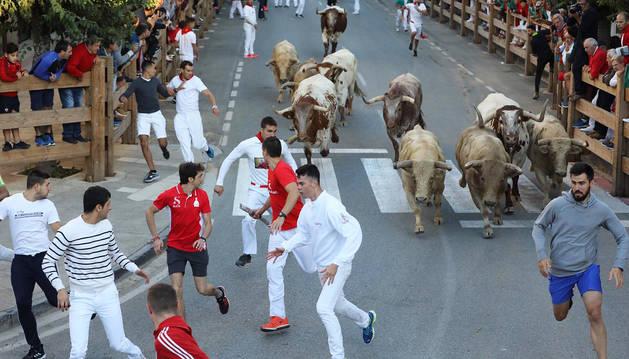 Foto de los mozos, delante de los toros de la ganadería Prieto de la Cal, en el segundo encierro de fiestas de Tafalla.