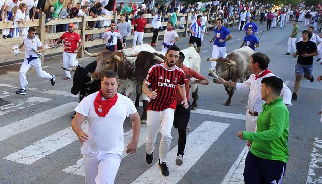 Los mozos corren ante los astados durante el cuarto encierro de las fiestas de Tafalla.