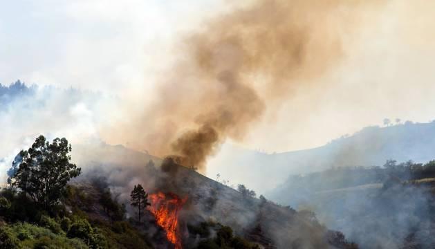 El incendio de Gran Canaria se descontrola y amenaza el parque natural de Tamadaba