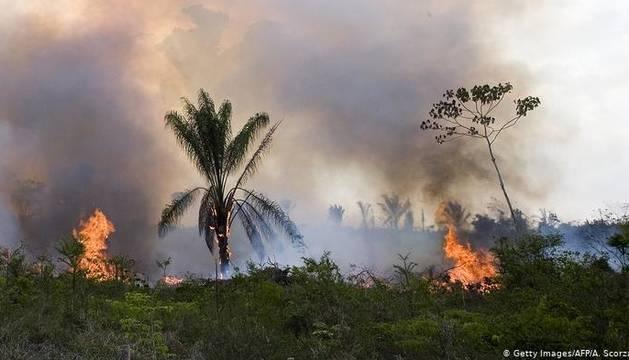 Cientos de personas llaman a rezar por el Amazonas ante los incendios