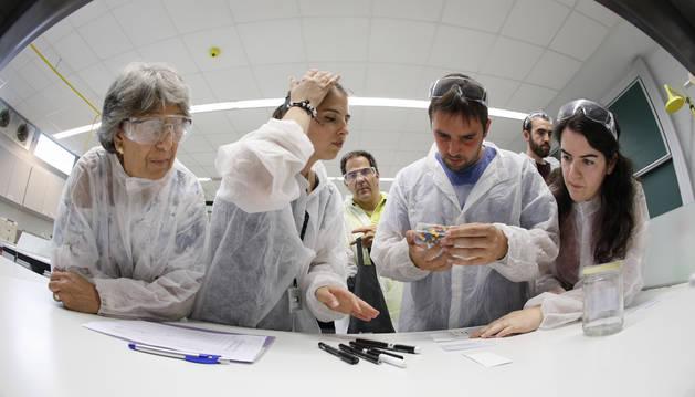 Una imagen del curso en el Museo de Ciencias de la Universidad de Navarra.