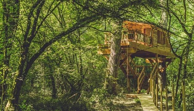 Casas en árboles en Navarra: vivir en las alturas