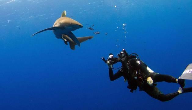 Piel de tiburón, a través de la cámara de Isaías Cruz