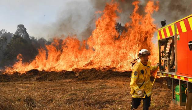 Varios niños, implicados en los incendios que calcinan el este de Australia