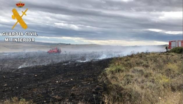 foto de Terreno quemado en el incendio de Miranda de Arga