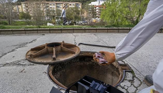 El control de ratas seguirá en Estella tras actuar este miércoles en calles del centro