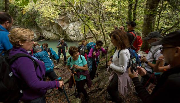 Foto de un grupo de senderistas disfrutando de una visita a la Cascada del Cubo de la Selva de Irati el pasado otoño.
