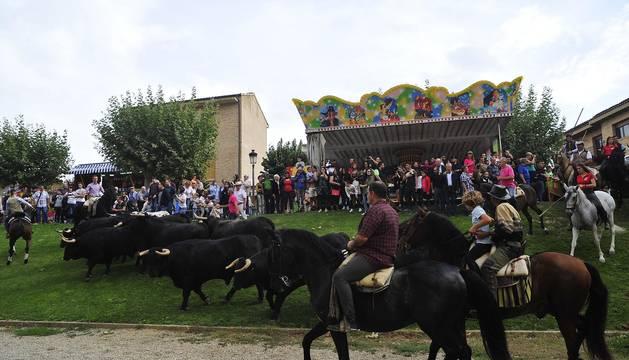 La localidad navarra acogió la feria del caballo este sábado 12 de octubre.