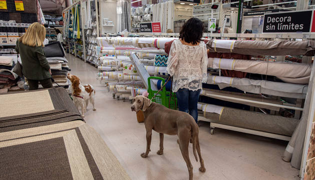Foto de dos personas en Leroy Merlin de Pamplona, con sus respectivos perros.