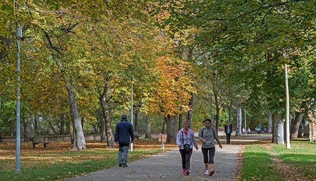 El paseo de Los Llanos de Estella muestra ayer los colores del otoño en la ciudad.