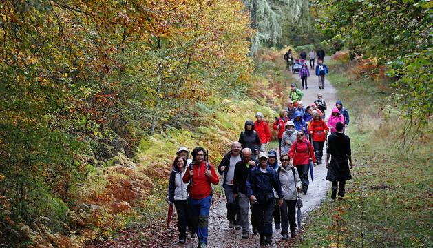 Foto de un grupo de visitantes llegado a la Selva de Irati desde lugares como Madrid se dispone a iniciar la marcha arropado por un colorido entorno otoñal.