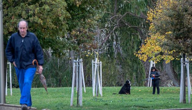 Foto del paseo de Los Llanos de Estella, el único lugar en el que existe ahora un pequeño espacio de esparcimiento canino vallado