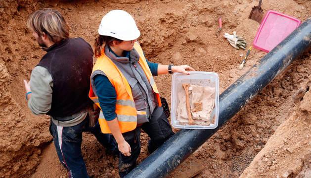 La arqueóloga Nerea Soto sostiene varios de los huesos encontrados durante las obras de renovación de redes de la calle Gayarre de Ribaforada.