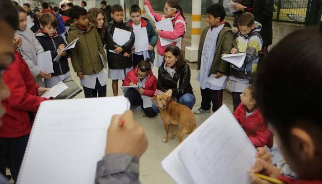 Foto de las preguntas de los estudiantes para conseguir la descripción más detallada de cada animal fueron una constante.