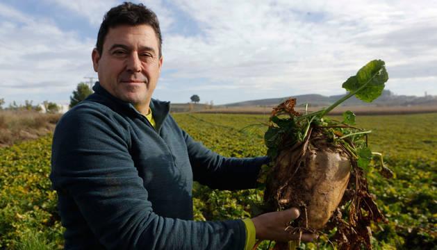 El agricultor Juan Luis Yábar  Jimeno posa con un ejemplar de remolacha azucarera en sus manos en una finca en las próximidades de Artajona. Al fondo, la torre del Cerco.