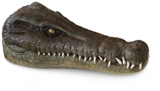 Reconstrucción del cráneo de la nueva especie de cocodrilo fósil.