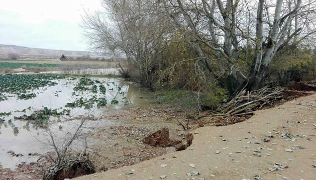 Foto de uno de los campos de Buñuel que se ha visto afectado tras la riada de este fin de semana.