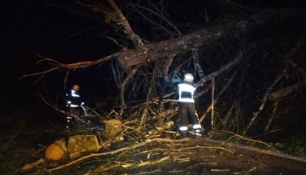 Incidencias del viento en Navarra