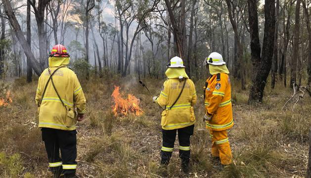 Australia se prepara para una nueva ola de calor mientras intenta sofocar los incendios