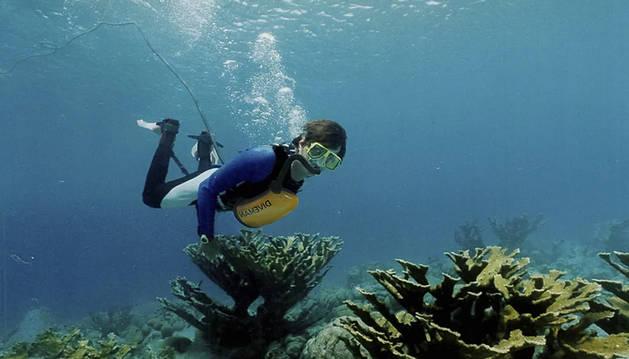 Foto del invento para respirar de forma ilimitada bajo el agua de Exolung.