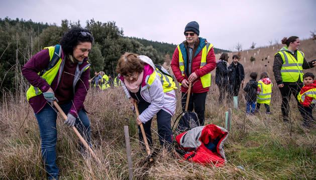 Foto de varios voluntarios colaboraron, este sábado, en la siembra de bellotas en el monte Ezkaba-San Cristóbal.