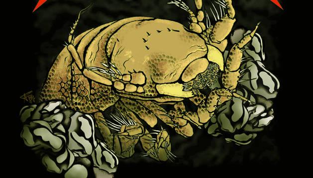 Metallica ya cuenta con una especie de crustáceo en su honor