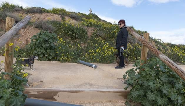 Una mujer pasea con sus perros por el camino del cerro de Santa Bárbara entre dos de las luminarias rotas.
