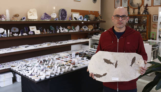 Foto de David Martínez sujeta un fósil de 50 millones de años con varias especies de Knightia, un pez ya extinguido, impresas.