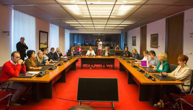 Foto de la comisión de Educación del Parlamento de Navarra del 4 de marzo.