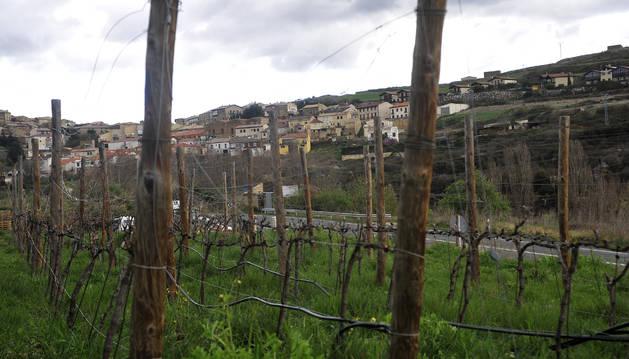 Foto del Eco Pueblo busca frenar la despoblación y paliar la falta de relevo generacional en San Martín de Unx.