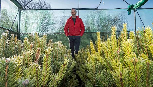Foto de Martín López de Zubiría, en el vivero de planta forestal que abrió hace tres décadas.
