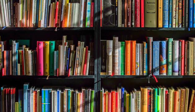 Imagen de archivo de varios libros en una estantería.