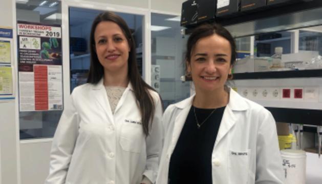 Esta organización benéfica líder en Reino Unido ha seleccionado el proyecto dirigido por la Dra. Maite Huarte para encontrar nuevas formas de tratar este tumor resistente a los medicamentos.