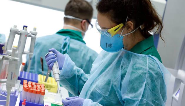 Australia comienza pruebas preclínicas de dos vacunas contra el coronavirus