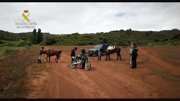Vídeo: La Guardia Civil denuncia a tres personas en Navarra por huir a caballo